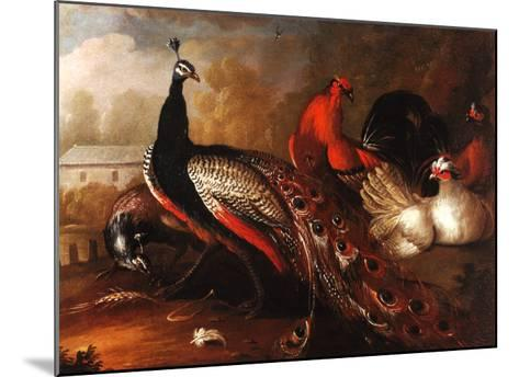 Peacock and Pheasant-Marmaduke Cradock-Mounted Art Print