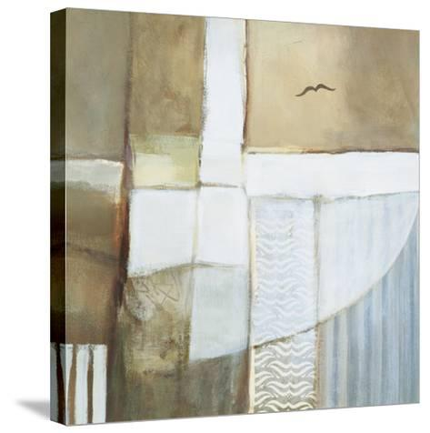 Lonesome Flight I-Richard Brandes-Stretched Canvas Print
