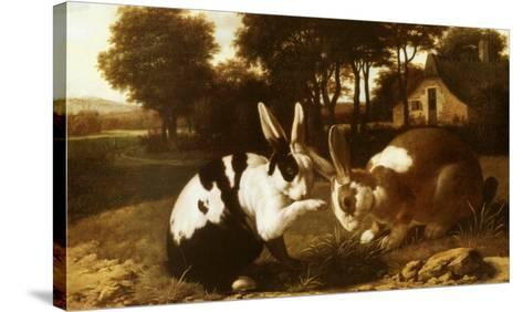 Two Rabbits in a Landscape--Stretched Canvas Print