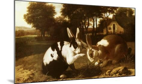 Two Rabbits in a Landscape--Mounted Art Print