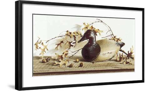 Chesapeake Bay Canvasback-Pauline Ebl? Campanelli-Framed Art Print