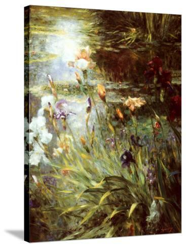 Water Garden Symphony II-Greg Singley-Stretched Canvas Print