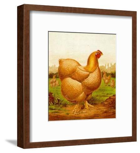 Blossom  Poultry--Framed Art Print
