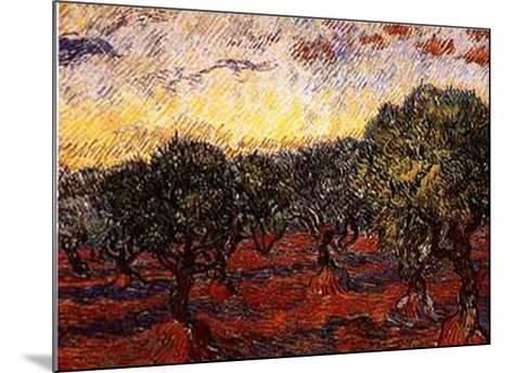 The Olive Grove, c.1889-Vincent van Gogh-Mounted Art Print