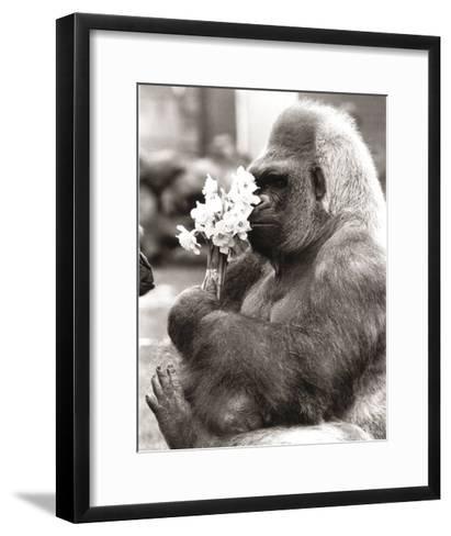 Flower Power-R^ Hollist-Framed Art Print
