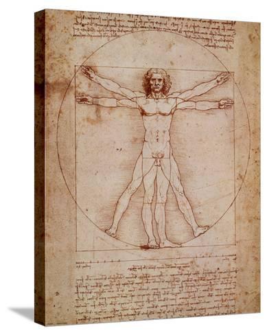 Vitruvian Man, c.1492-Leonardo da Vinci-Stretched Canvas Print