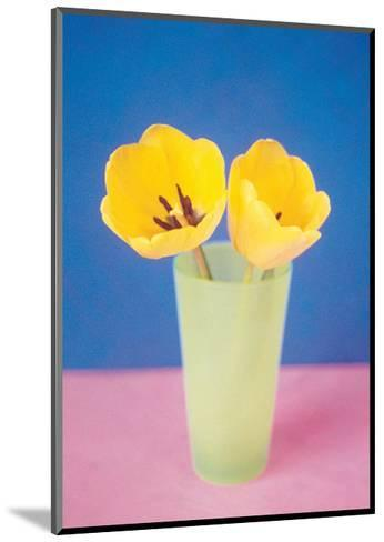 Vase with Tulips--Mounted Art Print