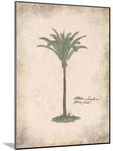 Fibres Palm-Hewitt-Mounted Art Print