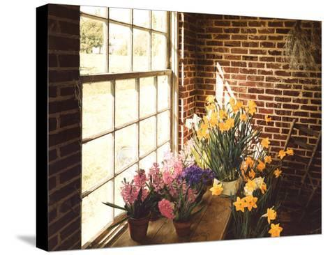 Flower House Morning-Philbeck-Stretched Canvas Print