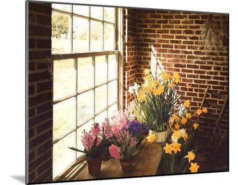 Flower House Morning-Philbeck-Mounted Art Print
