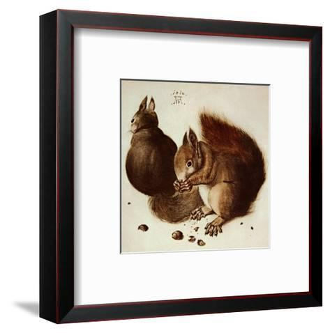 Squirrels-Albrecht D?rer-Framed Art Print