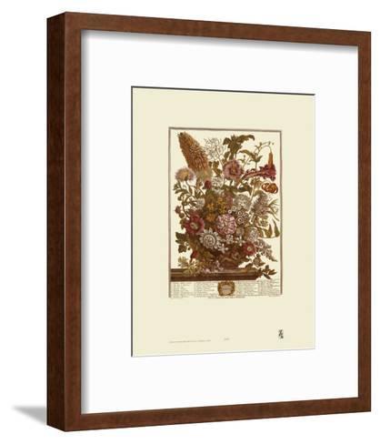Twelve Months of Flowers, 1730, August-Robert Furber-Framed Art Print