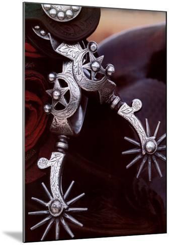 Silver Spurs-David R^ Stoecklein-Mounted Art Print