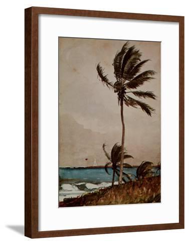 Palm Tree, Nassau-Winslow Homer-Framed Art Print