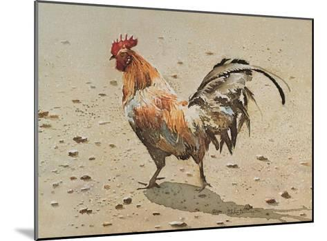Banty Rooster-LaVere Hutchings-Mounted Art Print
