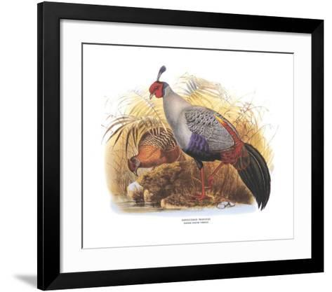 Siamese Crested Fireback-Wolf & Smit-Framed Art Print