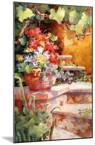 Steps of Provence-Diane Maxey-Mounted Art Print