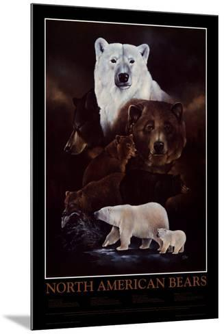 North American Bears--Mounted Art Print