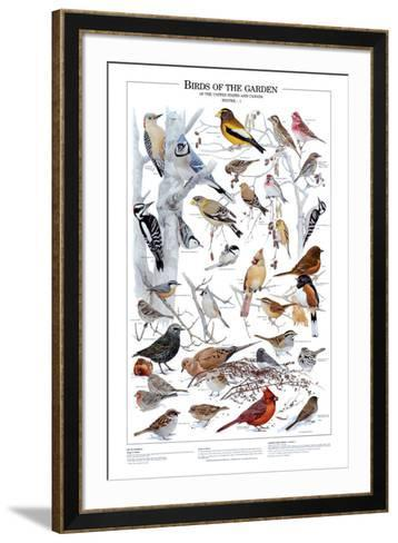 Birds of the Garden Winter I--Framed Art Print