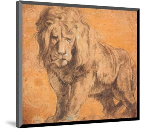 Lion-Peter Paul Rubens-Mounted Art Print