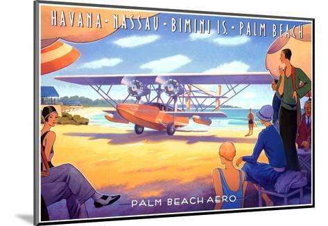Palm Beach Aero-Kerne Erickson-Mounted Art Print