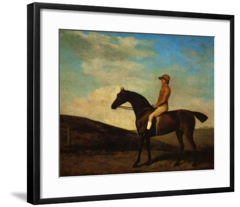 Rosaletta-George Stubbs-Framed Art Print