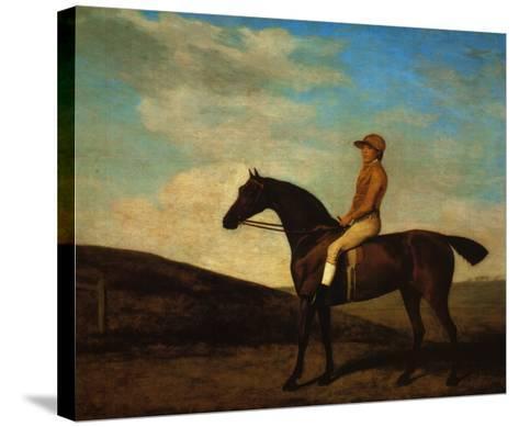 Rosaletta-George Stubbs-Stretched Canvas Print