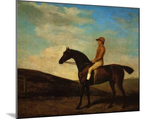 Rosaletta-George Stubbs-Mounted Art Print
