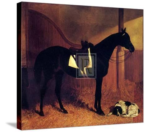 Askar and Roger in a Loose Box-John Frederick Herring I-Stretched Canvas Print