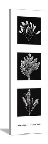 Photograms-Hazel Barrett-Stretched Canvas Print
