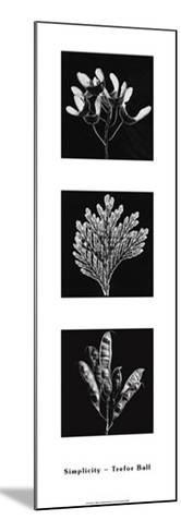 Photograms-Hazel Barrett-Mounted Art Print