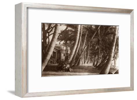 Coconut Lane, Waikiki, Hawaii, 1916--Framed Art Print