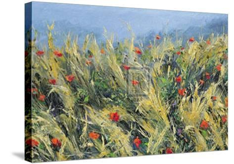 Wind-Blown Poppies-Gordon Breckenridge-Stretched Canvas Print