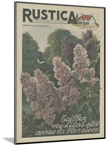 Plantez des Lilacs--Mounted Art Print