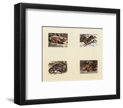 Micro Bunnies--Framed Art Print