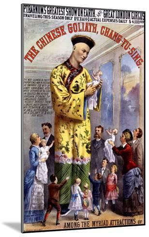 P.T. Barnum and the Great London Circus: The Chinese Goliath- Chang-Tu-Sing-Mounted Giclee Print