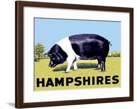 Hampshires--Framed Art Print