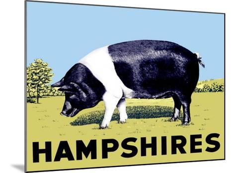 Hampshires--Mounted Giclee Print