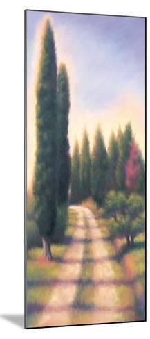 Tuscan Road I-David Wander-Mounted Art Print