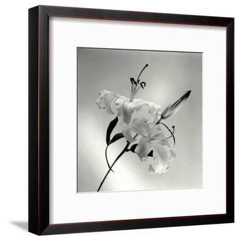 Flower Series X-Walter Gritsik-Framed Art Print