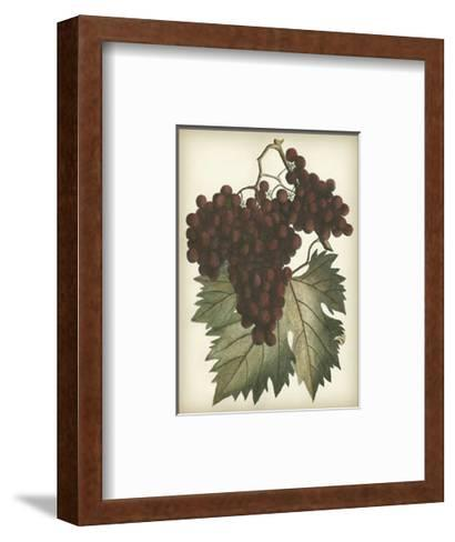 Red Grapes II--Framed Art Print