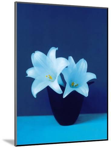 Lilies-Masao Ota-Mounted Art Print