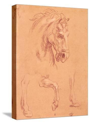 Horse Head-Pier Leone Ghezzi-Stretched Canvas Print