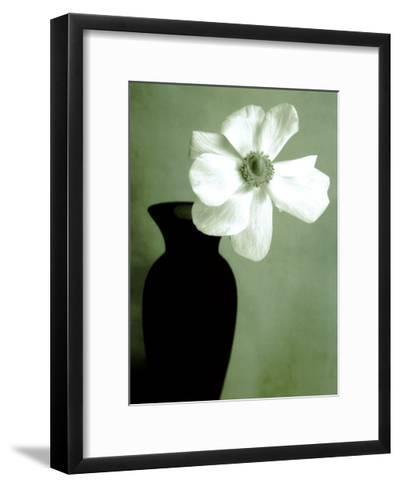 Single Anemone-Steven N^ Meyers-Framed Art Print