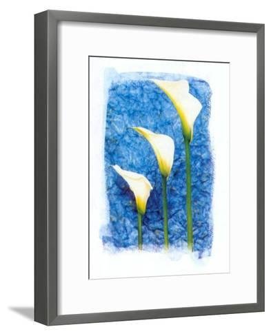 Colours of Summer I-Antonio Carrano-Framed Art Print