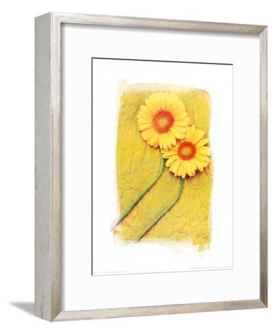 Colours of Summer II-Antonio Carrano-Framed Art Print