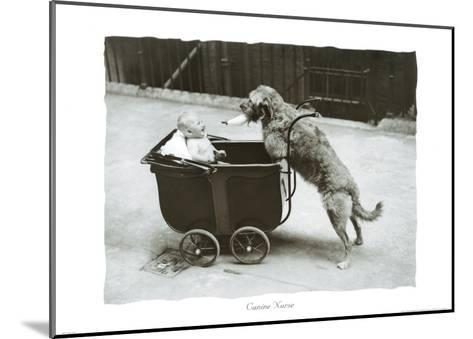 Canine Nurse--Mounted Art Print