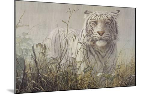 Monsoon- White Tiger (detail)-John Seerey-Lester-Mounted Art Print