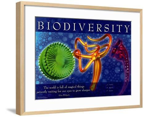 Biodiversity--Framed Art Print