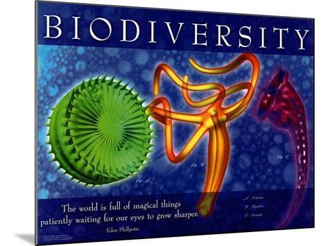 Biodiversity--Mounted Art Print